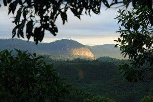 Brazil Ecolodge Itororó rainforest